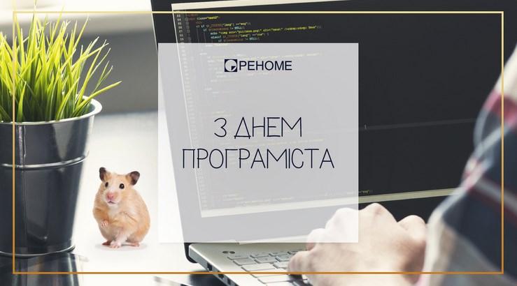 den_programista